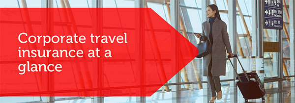 SF_Corporate_Travel_Insurance_img