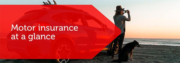 SF_Motor_Insurance_img