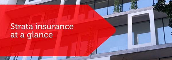 SF_Strata_Insurance_img